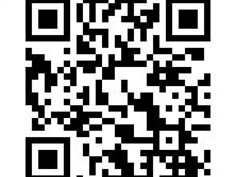 ※締切※【募集】10/17(土)BSCスポーツフェスティバル参加者募集のお知らせ